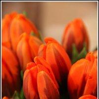 Весна... :: Ксения Божанова