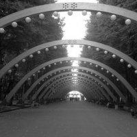 Москва, Сокольники :: Валерия Яскович