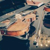 скрипки :: Алексей Стр.