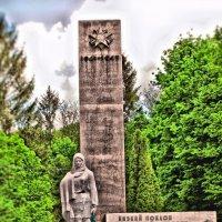 монумент в г.Семеновка :: Игорь Стародубец