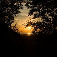 погружение солнца :: Наталья Репницына