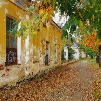 Окрашено осенью :: sergej-smv
