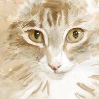 Кошка Мышка) :: Кристина Баран
