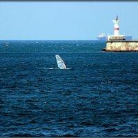 скорость,ветер,свобода... :: Sergey Bagach