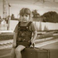 на чемодане! :: Михаил Кузнецов