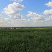 пейзаж :: Сергей Васин