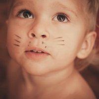 маленький котик:) :: Натали Ермоленко