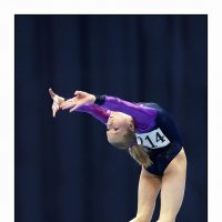 Спортивная гимнастика :: Валерий Шейкин