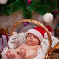 Новогодний подарок :: Vladimir Filinkov