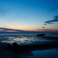 Белое море :: Наталья Репницына