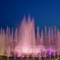 Поющие фонтаны. :: Ольга