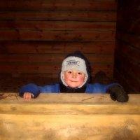 """""""Зимушка-зима!.."""" :: виктория титова"""