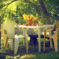 В саду ... :: Елена Kазак