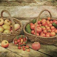 Дачный урожай. :: Елена Kазак