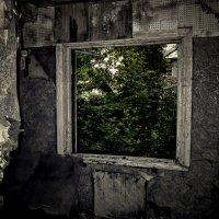 окно :: Роман Шершнев
