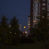 Луна :: Денис Шапошников