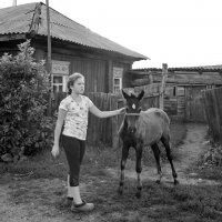 Деревенские дети :: Светлана Рябова-Шатунова
