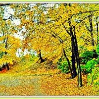 Осенний импрессионизм :: Leonid Tabakov