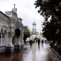 Дождь :: tipchik