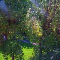 Вид из моего окна :: Александр Сапунов