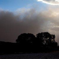 Песчаная буря :: Геннадий Мельников