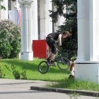 Про велосипед :: Татьяна