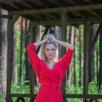 Леди в красном :: Анастасия Сапронова