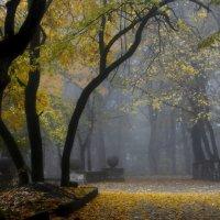 В старом парке........ :: Юрий Цыплятников