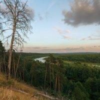 На излучине реки :: Вадим Sidorov-Kassil