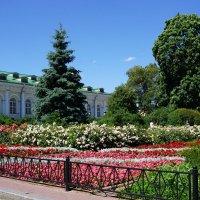 Лето в Александровском саду :: Ольга