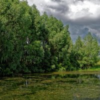 Край озера :: Дмитрий Конев