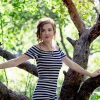 Яблоневый сад :: Наталия Соколова