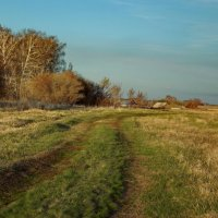 Пейзаж за нашим огородом :: Светлана Рябова-Шатунова