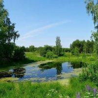 Маленькое озеро на лесной поляне :: Натала ***