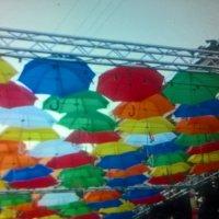 Зонтики :: Митя Дмитрий Митя