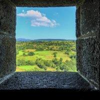 окно на природу :: Георгий