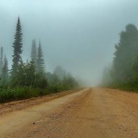 Уходящая в туман. :: Евгений Голубев
