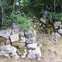 Камни, камни... :: veera (veerra)