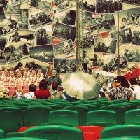 Концерт в честь дня Победы :: Сашко Губаревич