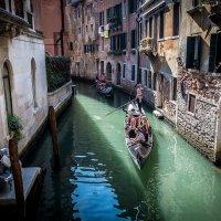 жаркий август в Венеции :: Олег Семенов