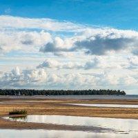 Финский залив (4) :: Виталий