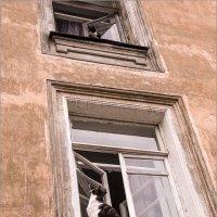 Его любовь на третьем этаже... :: Александр