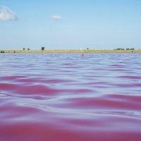 Малиновое озеро :: Ирина