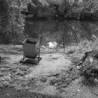 Неухоженный парк :: Валерий Михмель