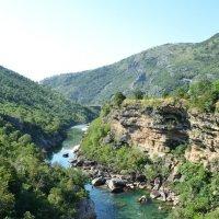 Каньон реки Морача :: Ольга