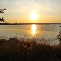 Закат над заливом. :: Маргарита ( Марта ) Дрожжина