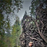 Селфи в Петраковском лесу :: Валерий Талашов