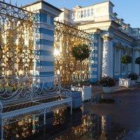 Ограда Екатерининского Дворца :: Елена