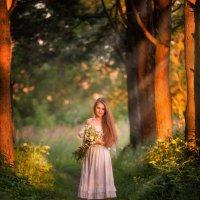 В сказочном лесу :: Людмила