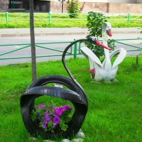 "Композиция ""Пара лебедей"" :: Daria Vorons"